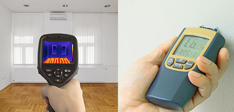 Thermal Imaging and Moisture Detection